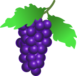 A purple bunch of grapes
