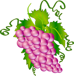 A pink bunch of grapes